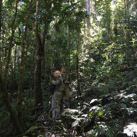 Chirripo National Park, Costa Rica: photo1.jpg