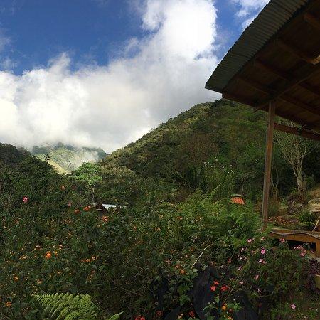 Chirripo National Park, Costa Rica: photo4.jpg