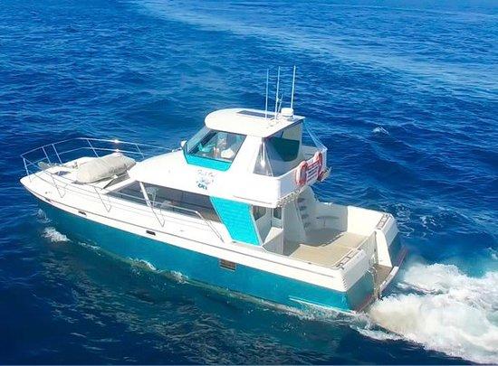 Whangamata, New Zealand: FishOn Charters