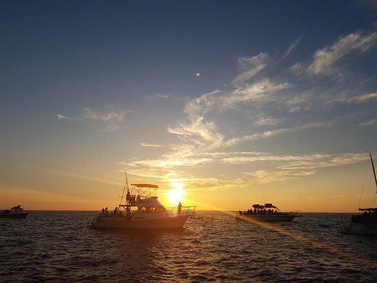 Kona Diving Company: Sunset before the manta dive