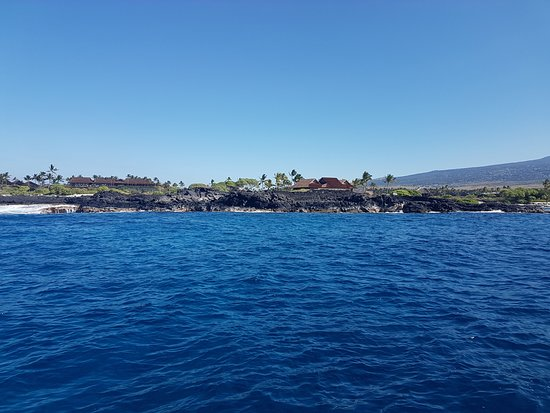 Kona Diving Company: One of the morning dives we did