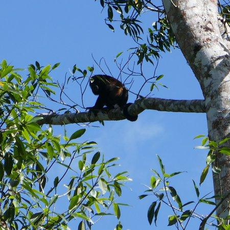 Boca Sabalos, Nicaragua: photo2.jpg