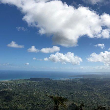 El Yunque Photo