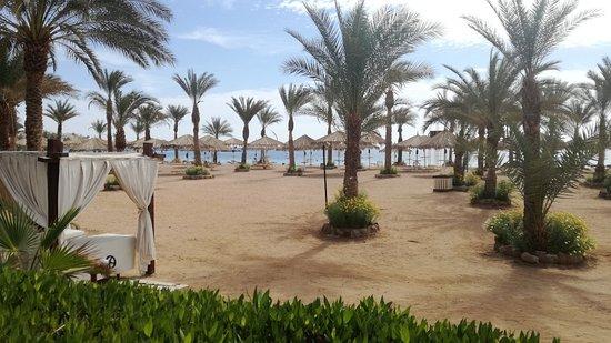 Ghazala Beach Hotel : IMG_20180221_104116_large.jpg