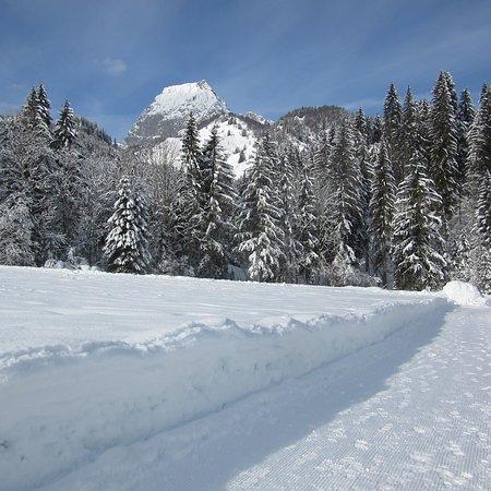 Kirchdorf in Tirol, Österreich: photo1.jpg