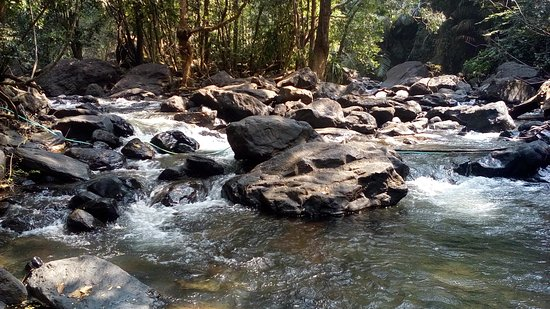 Bhagwan Mahavir Wildlife Sanctuary: природа