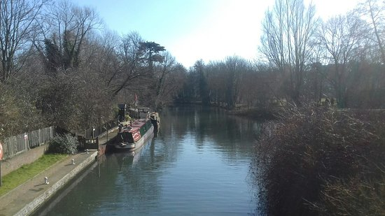 River Lea: 20180225_114734_large.jpg