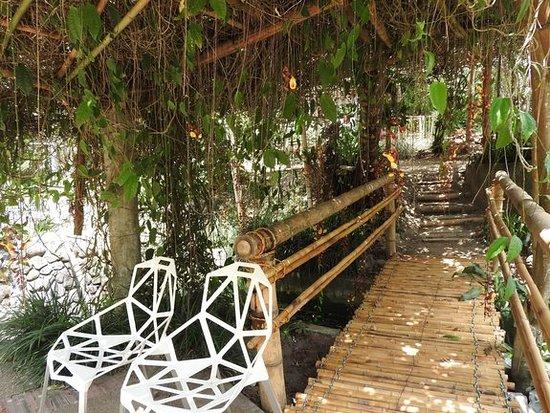 Reserva Natural Orquideas del Tolima