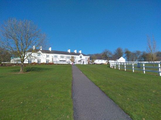 Mountnugent, Ireland: IMG-20180225-WA0014_large.jpg