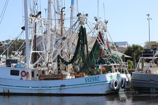 Fernandina Beach, FL: Shrimp boats