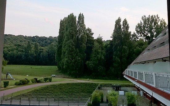 Соль-ле-Шартрез, Франция: 2014 - Il faisait très chaud, très exposée au soleil.