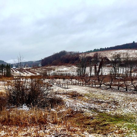 Deerfield, MA: Open into the winter as long as they have apples and cider available!
