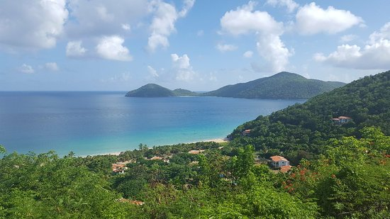 Sage Mountain National Park, Tortola: 20160822_085120_large.jpg