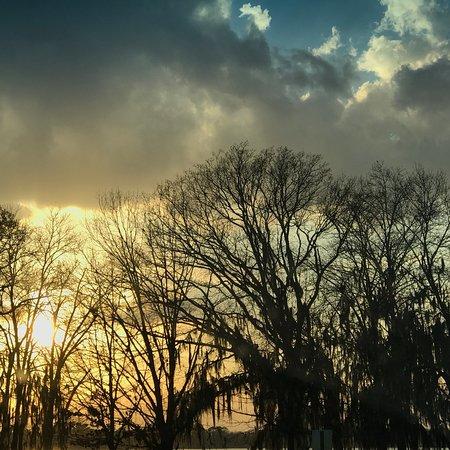 Lake Blackshear Resort and Golf Club: photo1.jpg