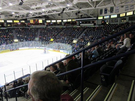 Germain Arena Hockey Crowd Picture Of Germain Arena Estero