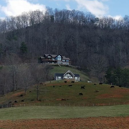 Wildberry Lodge: photo7.jpg