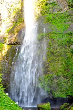 Multnomah Falls: Pictures can't do it justice!