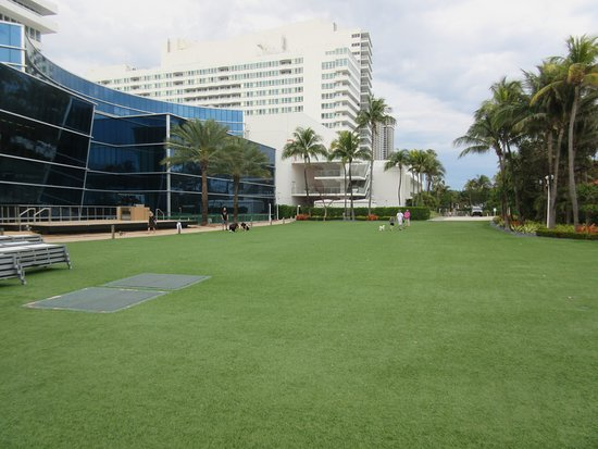 Fontainebleau Miami Beach : Outdoor Lawn for Receptions
