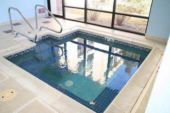 Hampton Inn Kansas City Liberty: Pool