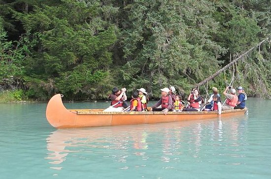 Full-Day Alaska Wildlife Voyageur Canoe Safari from Skagway