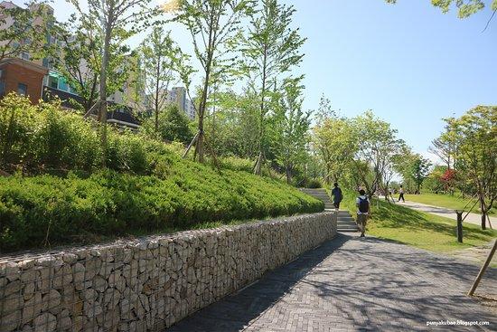 Gyeongui line forest