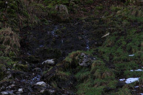 Ridge Walk Mam Tor to Losehill: IMG_6985_large.jpg