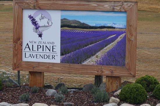 Mackenzie District, Nueva Zelanda: Signboard of farm at entrance