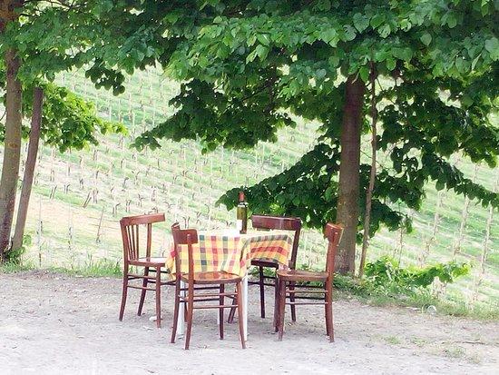 SERATE A TEMA  - Picture of Azienda Agricola Gravanago, Fortunago - Tripadvisor