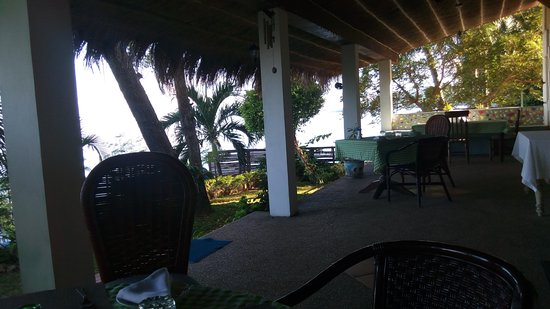 Las Flores: View from Dining Area