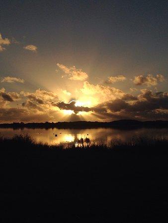 Lake Horowhenua : photo2.jpg