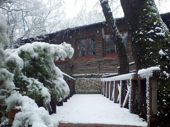 Neo Petritsi, Hellas: Χιονισμένη μια από τις τρεις γέφυρες της Όασης!