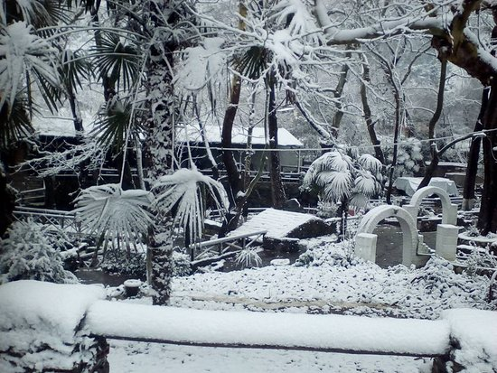 Neo Petritsi, Hellas: Χιονισμένη Όαση!!!!