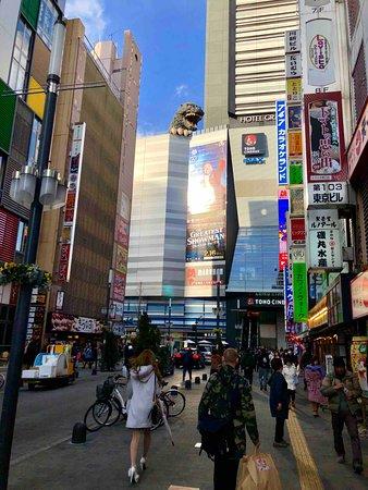 Godzilla Road