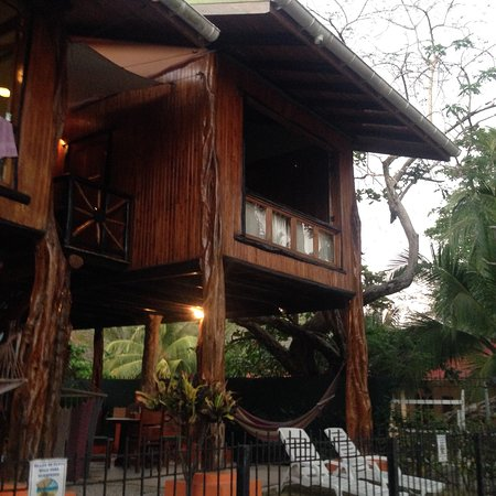 Samara Tree House Inn