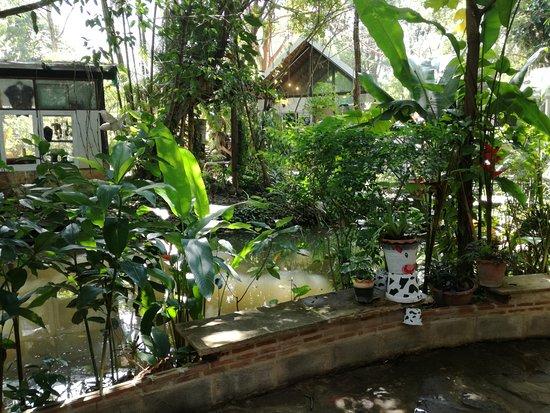 Nakhon Ratchasima Province, Thaïlande : Secret Art Garden