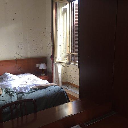 Hotel Stromboli: photo3.jpg