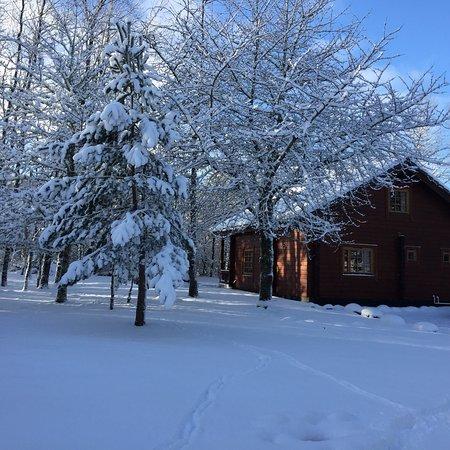 Wildside Highland Lodges: photo0.jpg
