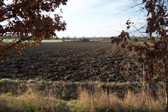 Pluckley, UK: View from the car park