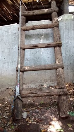 Moon Dance Magic View Bungalow: Ladder down to bathroom area. Turns to mud after a shower, wash feet off at top of ladder.