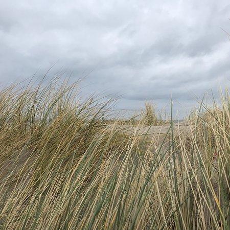 Strand Warnemünde: photo1.jpg