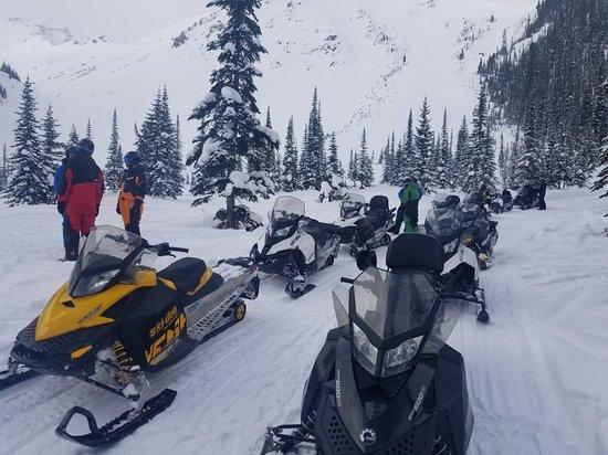Golden, Canada: 20180224_145711_large.jpg