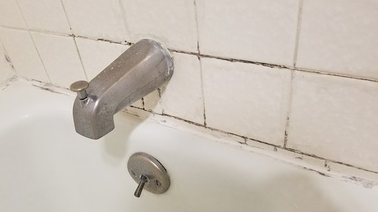 Soap Scum And Mold Stained Faucet Picture Of