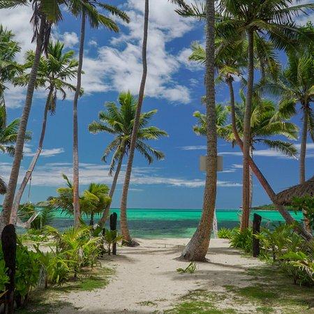 Tavewa Island, Fiji: photo0.jpg