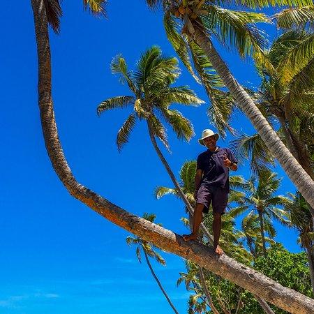 Tavewa Island, Fiji: photo3.jpg