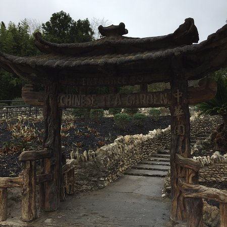 Japanese Tea Gardens : Nice garden with small tea shop for Tea and desserts   5 min from zoo.