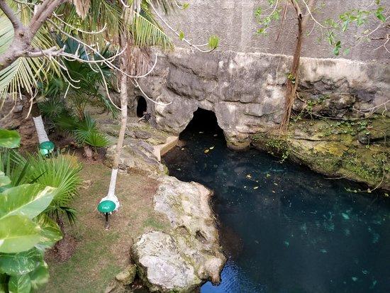 Hotel Posada Sian Ka'an: cenote