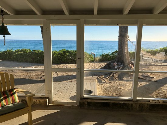 Linton's Beach Cottages : View from the Seagrape Cottage