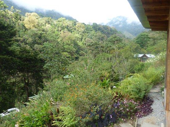 Chirripo National Park, Costa Rica: View from Cassita Blanca