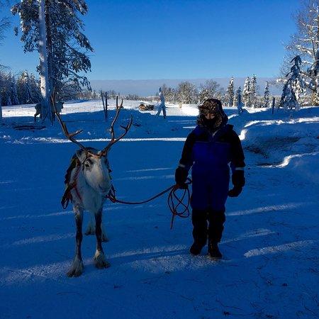 Ruka, Finlandia: photo1.jpg