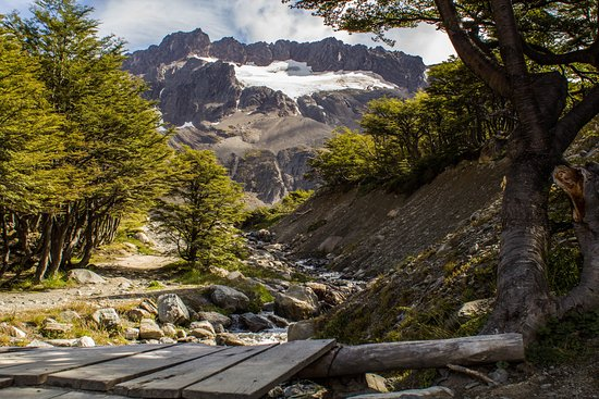 Glaciar Martial: Camino al glaciar